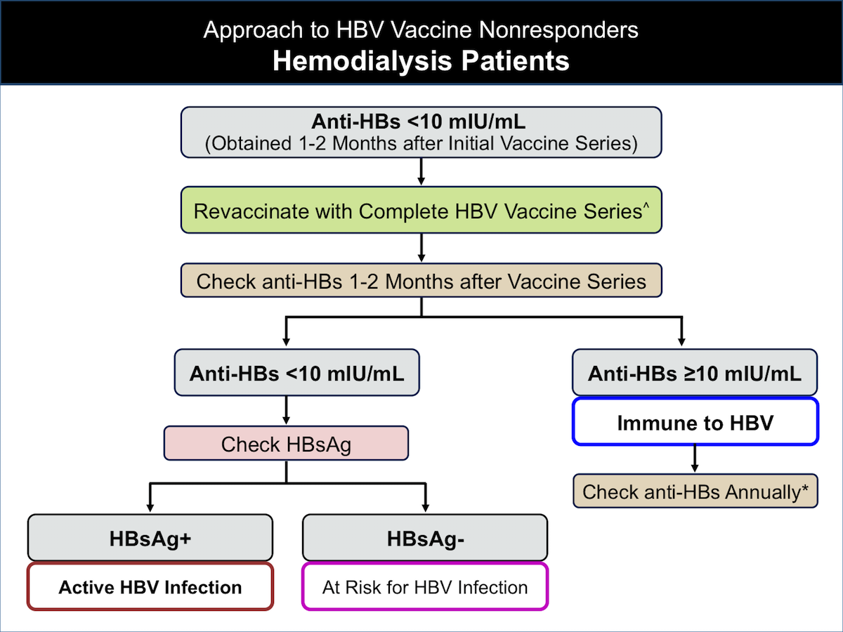 This graphic describes the approach to hemodialysis patients who do not respond to the initial HBV vaccine series.</br>